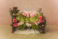 Brisbane Newborn Painted Digital Artwork–20