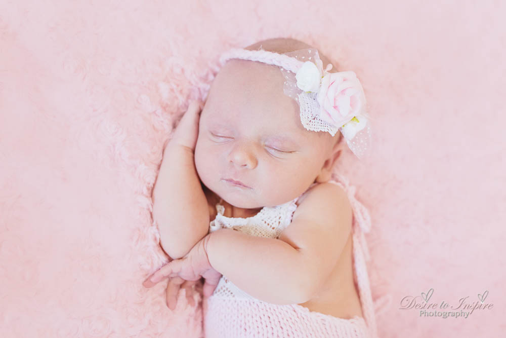 Brisbane Newborn Photography-4211