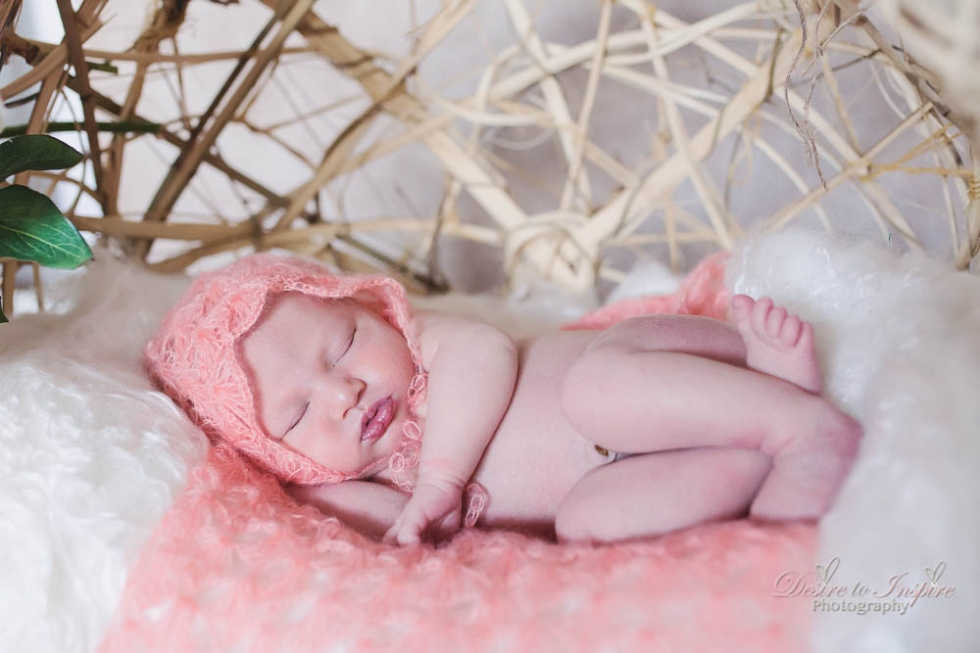 Brisbane Newborn Photography--5