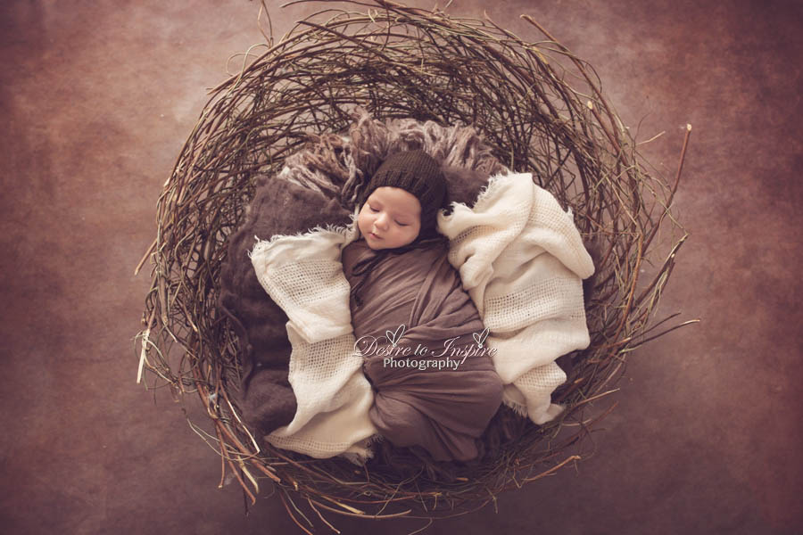 Brisbane Newborn Photography (2 of 5)