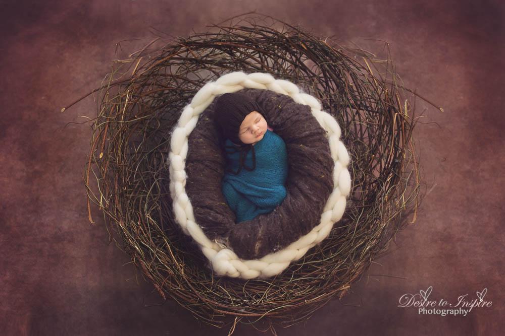 Newborn Photography (28 of 28)